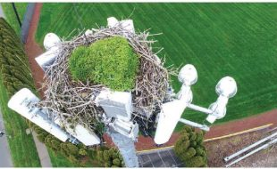 Mission Profile: 3D Mapping An Osprey Nest (On a Cell Tower!)